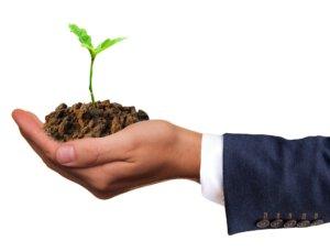 Schone lucht is belangrijk om gezond te kunnen leven. Bomen filteren de lucht schoon en leveren dus een voordeel op voor de gezondheid.