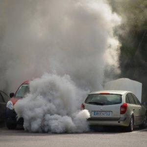 Luchtvervuiling en Bijen (geurmoleculen, fourageren)