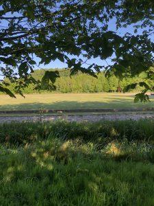 Schone Lucht Project - Viridi Air – Landgoed De Beylevelden (12)