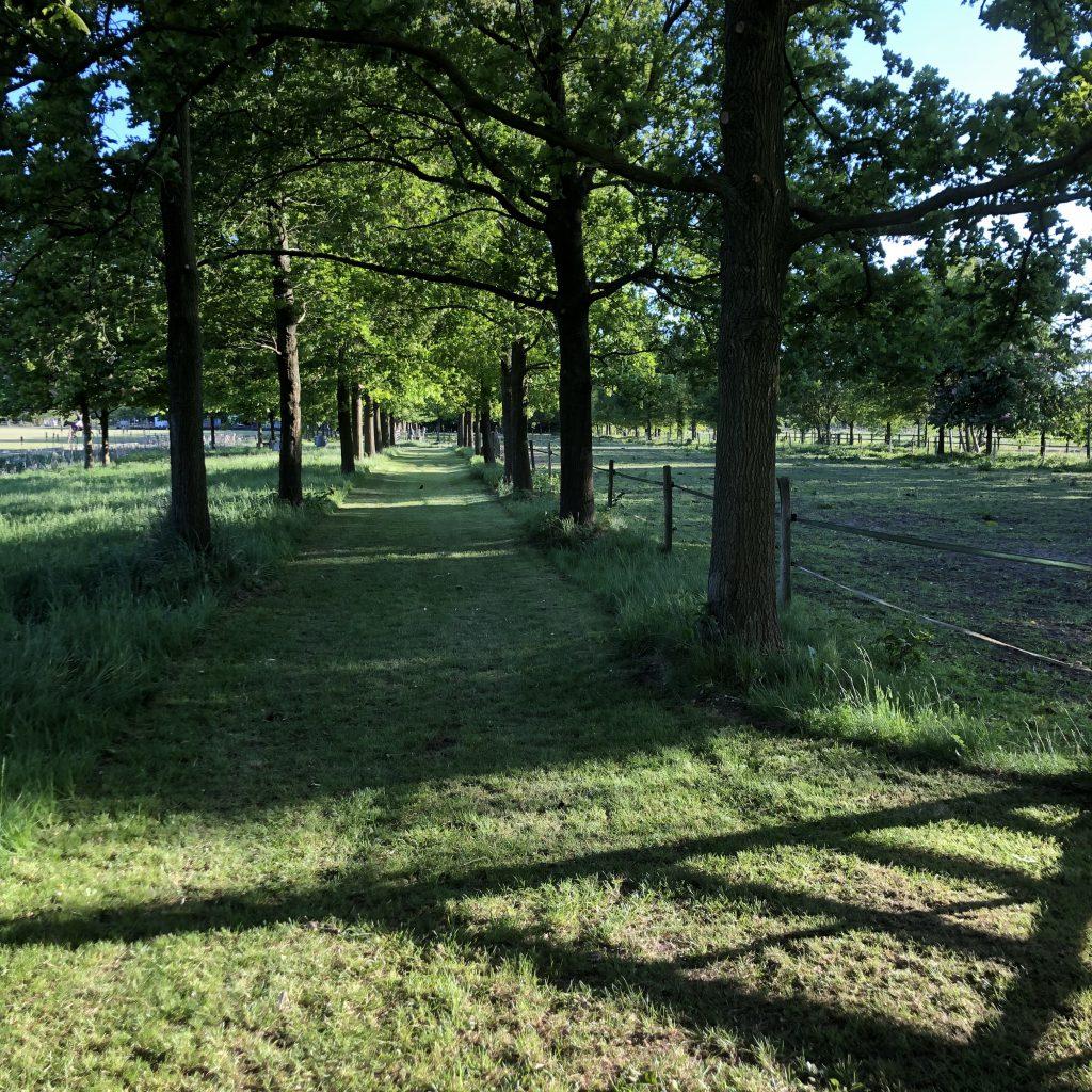 Schone Lucht Project - Viridi Air – Landgoed De Beylevelden (14)
