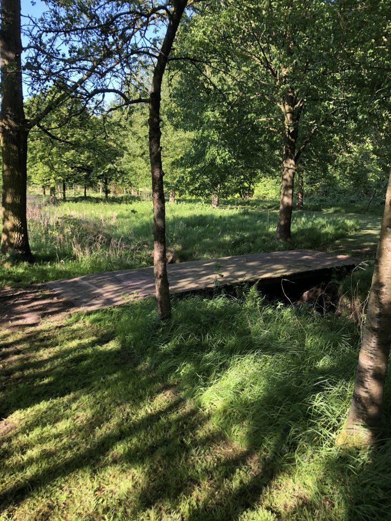 Schone Lucht Project - Viridi Air – Landgoed De Beylevelden (2)
