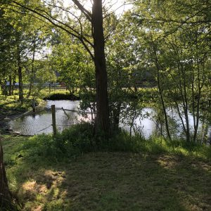 Schone Lucht Project - Viridi Air – Landgoed De Beylevelden (26)