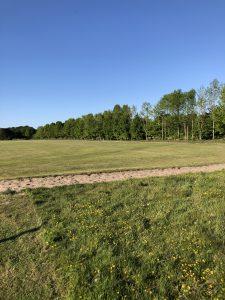 Schone Lucht Project - Viridi Air – Landgoed De Beylevelden (5)