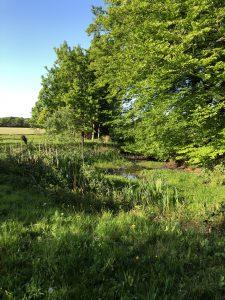 Schone Lucht Project - Viridi Air – Landgoed De Beylevelden (7)