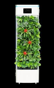 Luchtreiniging met luchtzuiverende planten