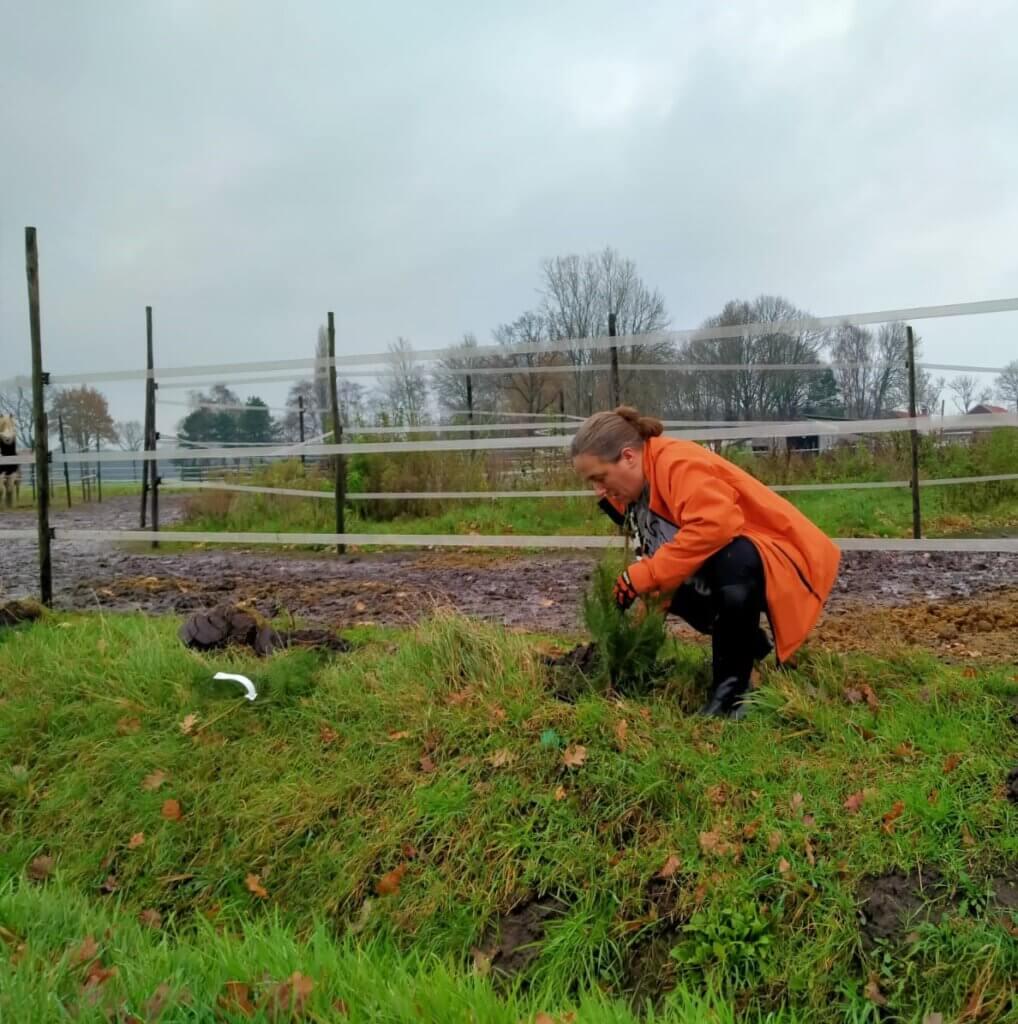 Lucinda (zorgboerderij 't Opstapje) plant boom